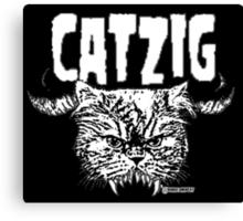 catzig Canvas Print