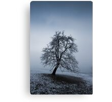 moody tree Canvas Print