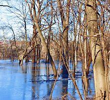 Central Plains Flooding by Jarede Schmetterer