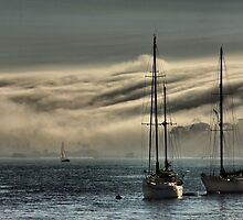 Fog Rolling In by Barbara  Brown