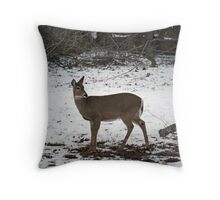Jane Doe Throw Pillow