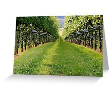 An Eye Full - Horton Cellars   ^ Greeting Card