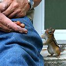 DID HE WASH HIS HANDS?? by Lori Deiter