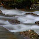 loggerheads north wales by Mike Davitt