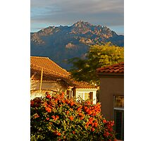 Tucson Beauty Photographic Print