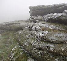haytor on new years eve by brucemlong
