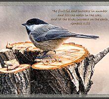 Genesis 1:22 by Gaby Swanson