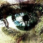 The Eye of Nature by marie223