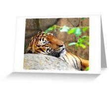 Fractalius Tiger Greeting Card