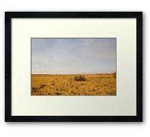 Louisiana Fields Framed Print