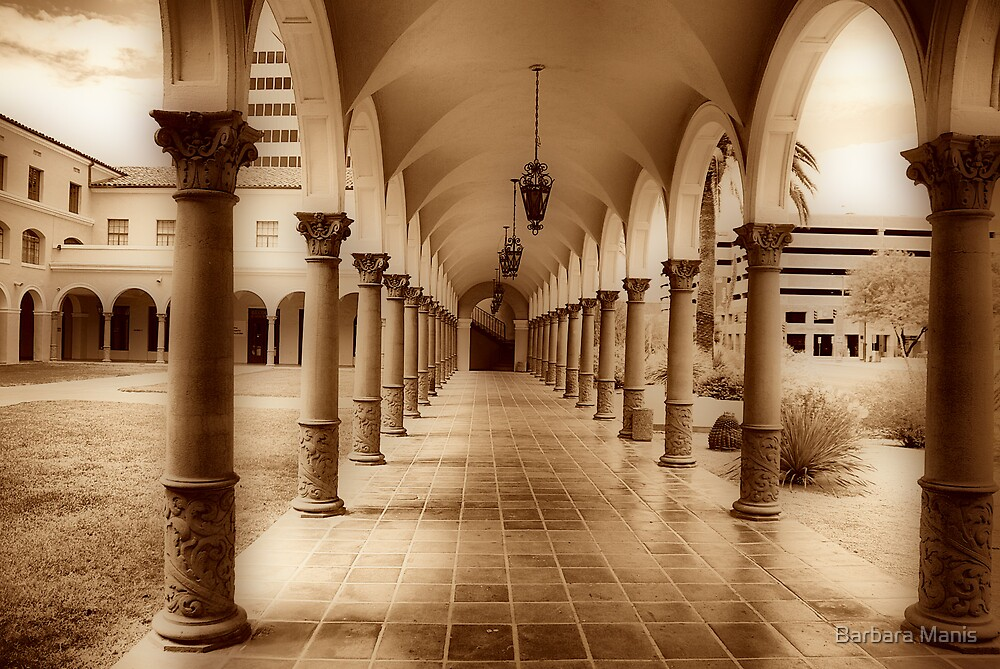 Pima County Courthouse #1 by Barbara Manis