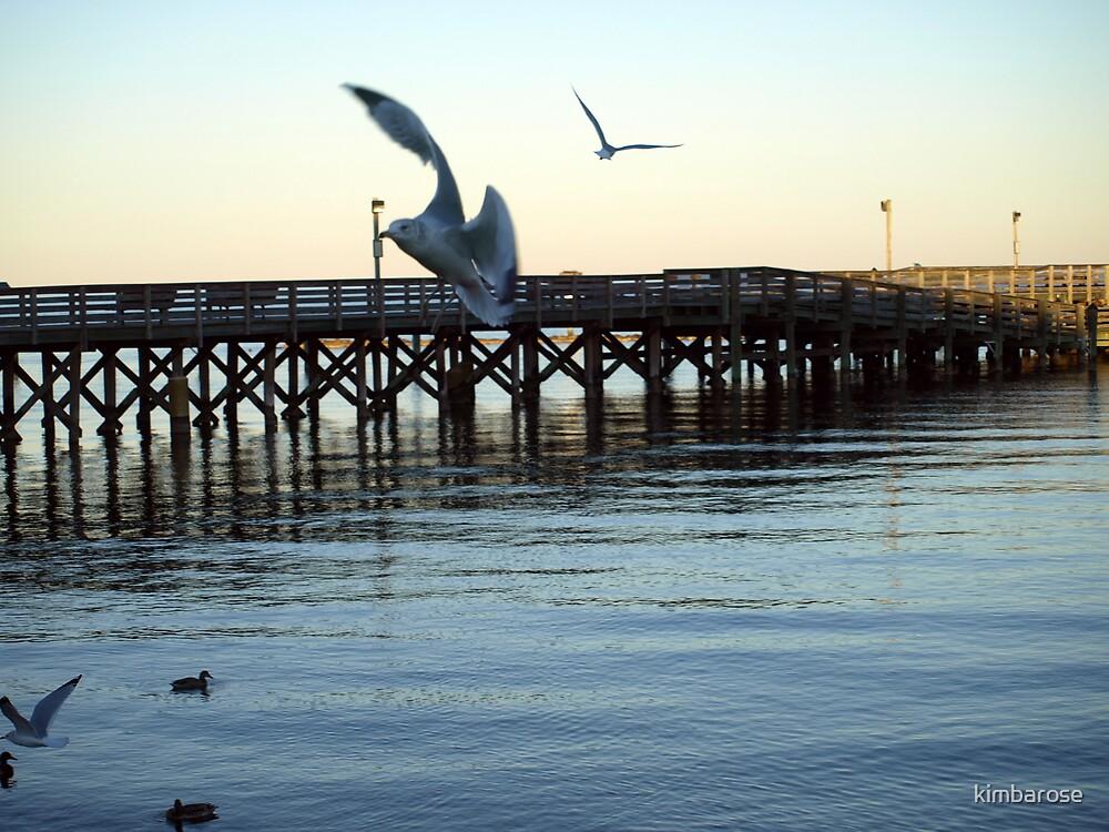 North Beach Pier by kimbarose