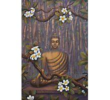 Nature of Buddha Photographic Print