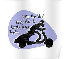 With The Wind In My Hair And Gnats In My Teeth Poster