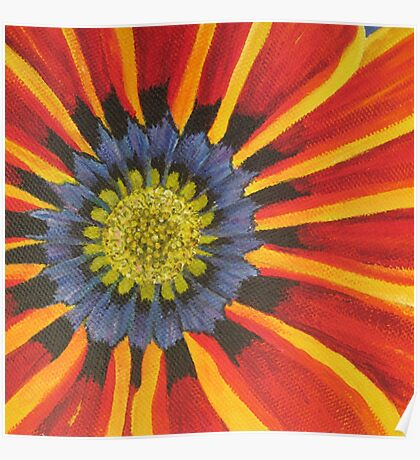 Gazania - Section of Painting  Poster