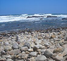 Rocks and Beach, Cape of Good Hope by Jan  Saggers