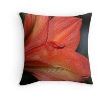 Amaryllis 2 Throw Pillow