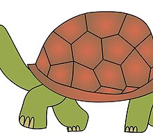 tortoise by siloto