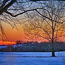 """""""Last Winter Fling Just Before Spring"""" by Melinda Stewart Page"""