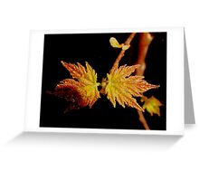 Poetic Beauty Greeting Card