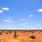 The Australian Outback by Clive