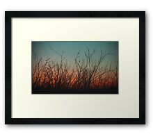 Waiting For The Summer Rain To Fall Framed Print