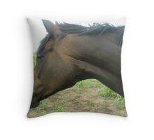 Horse Flies Throw Pillow