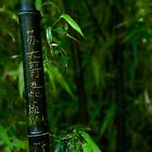 Bamboo Characters - Chinese Gardens - Sydney by Jeff Catford