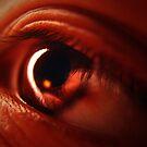 Brown eye by Laura Thai