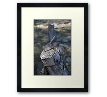 Fence Post Framed Print