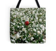 Lonely Red Tulip Tote Bag