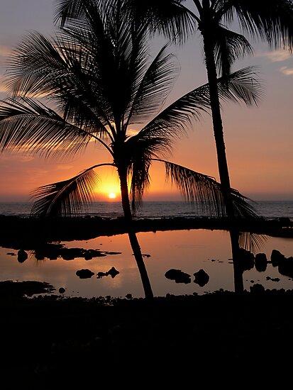 Kona Sunset by Stanton Hooley
