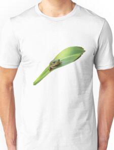 Green tree frog Unisex T-Shirt
