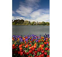 Floriade Photographic Print