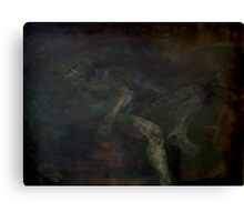 NARCISSISM, AN ABYSS, A DEATHLY SLEEP Canvas Print