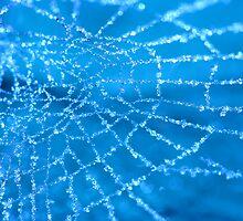 Diamond Blue by Sharon Johnstone