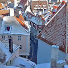 Tallinn's roofs from 15 century by loiteke