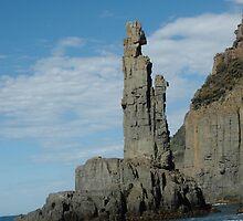 Bruny Island. by nJohnjewell