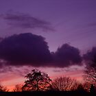 Purple Sky by smook