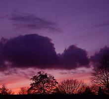 Purple Sky by smook
