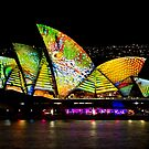 Scaley Sails - Sydney Vivid Festival - Australia by Bryan Freeman