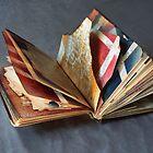 the book by myralandau1