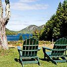 Green Adirondack Chairs at Maine Lake by dbvirago