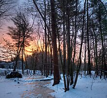 Sudbury Sunrise Jan 2 2009 by EvaMcDermott