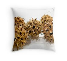 Five Tree Seed Pods Throw Pillow