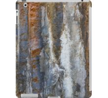 detail of the rock wall iPad Case/Skin