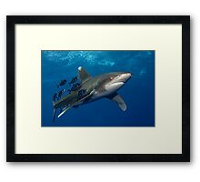 Speed Up Framed Print