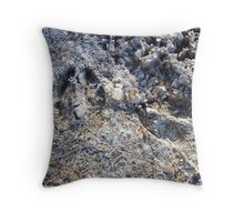 Deer Sign Throw Pillow