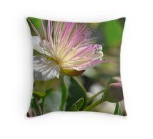 Botanic Gardens Bloom Throw Pillow