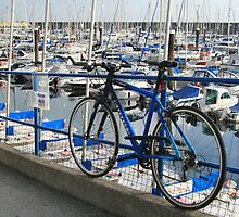 Bicycle in Blue by Avril Jones